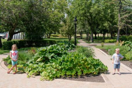 Regina Family Photographer - Government House - Vegetable Garden