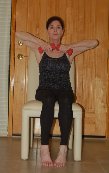 seated shoulder lift 2