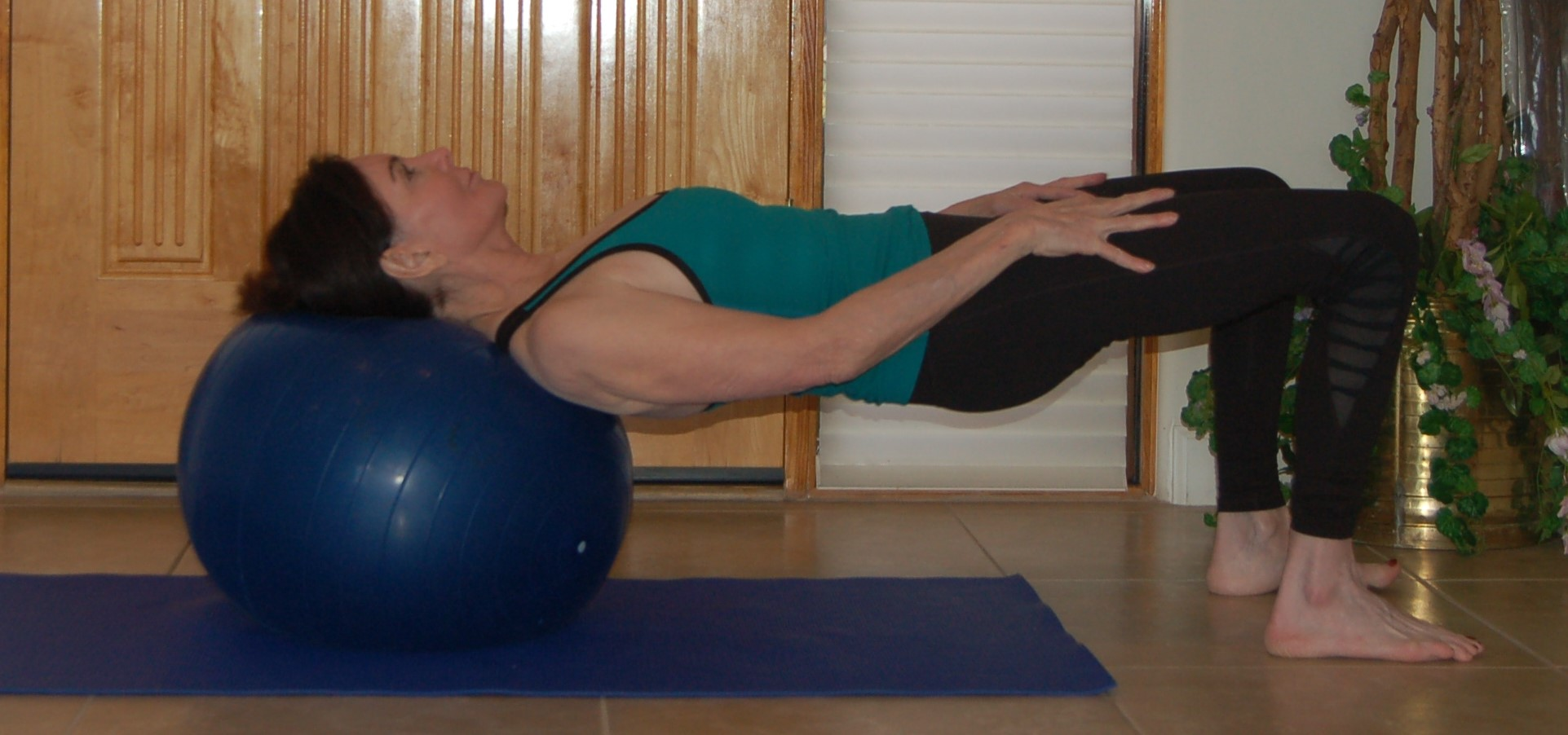 Exercise Ball Bridge