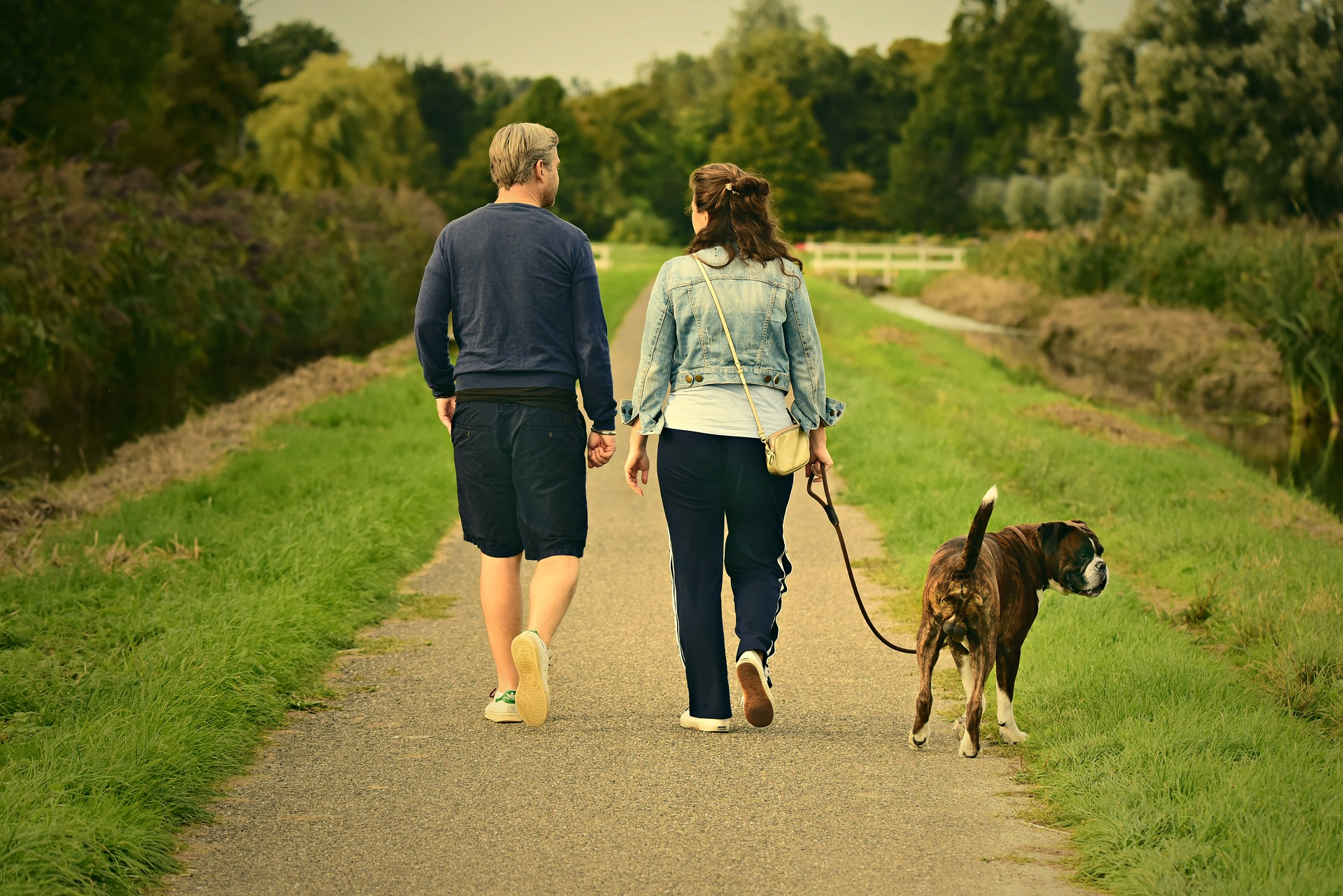 Walking Your Dog Can Build Stronger Bones