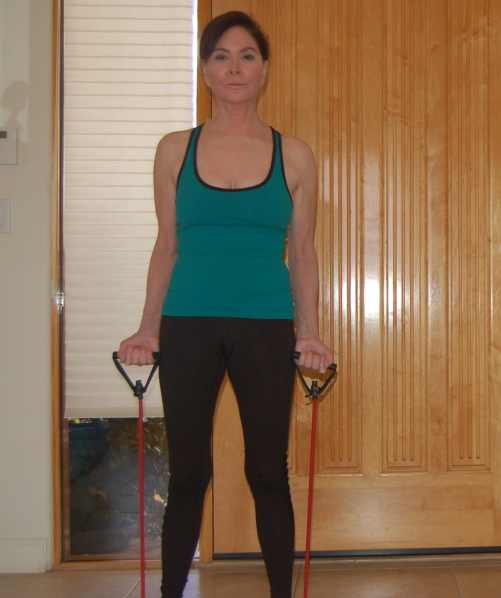 bicep curls with resistance bands