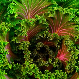leafy greens and brain health