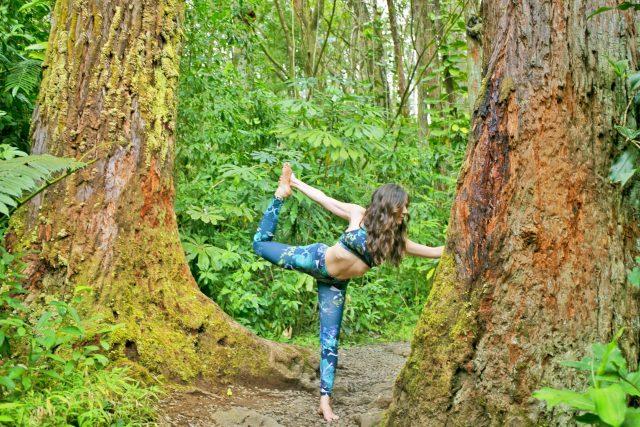 Harvest Active Yoga Manoa Falls