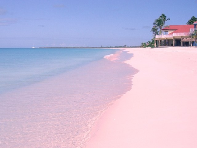 Pantone's Color of the Year Pink Beach in Bahamas