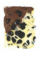 Mineral print-2