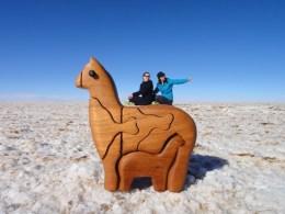 Uyuni Salt Flat fun. Bolivia.