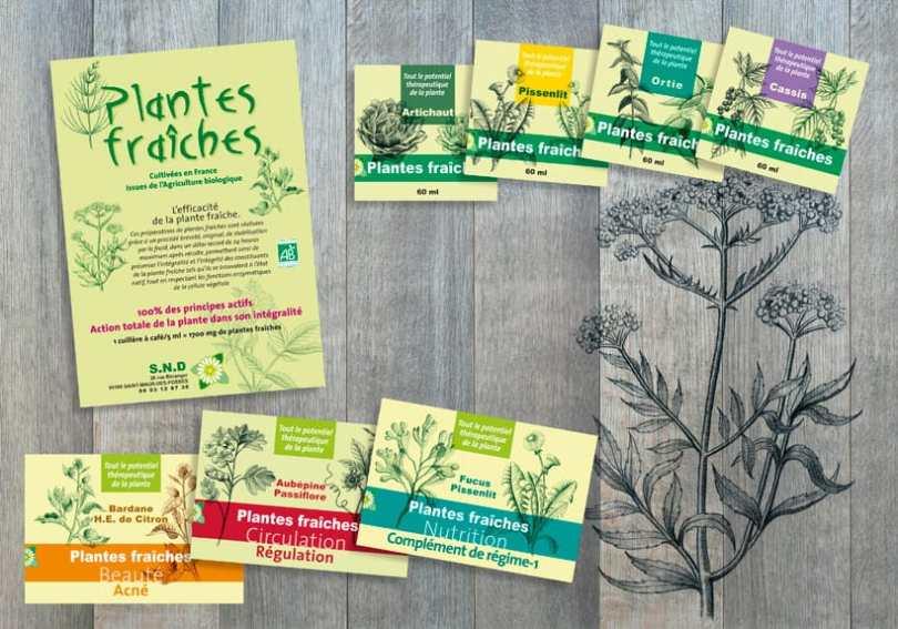 flyer et dessins nature, étiquettes plantes fraîches compléments alimentaires
