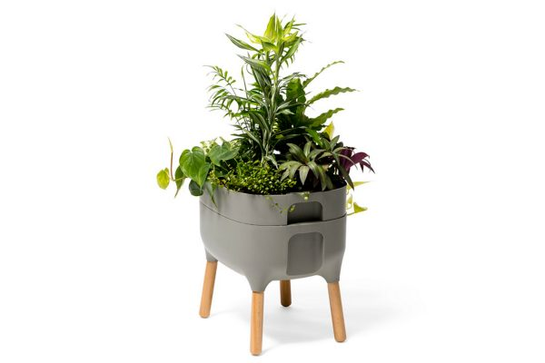 urbalive self watering planter light anthracite
