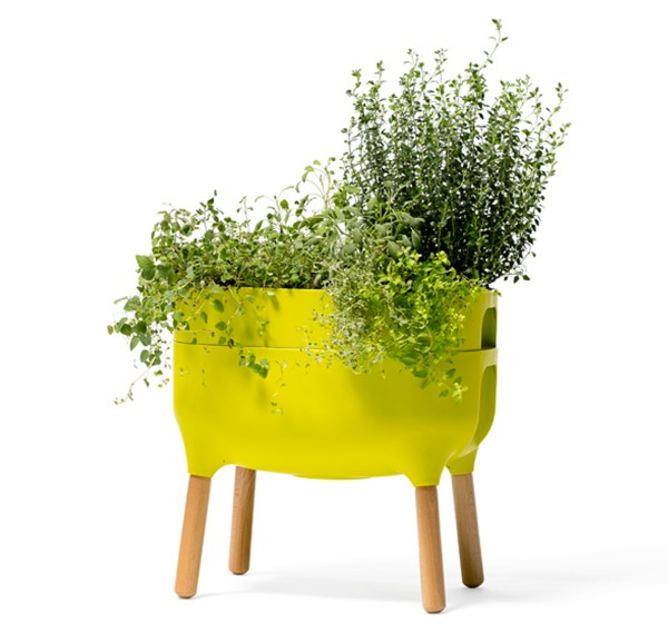 urbalive self watering planter green with plant