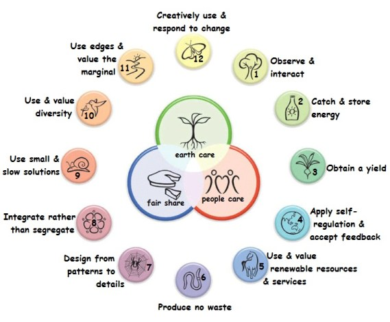permaculture circle graphic