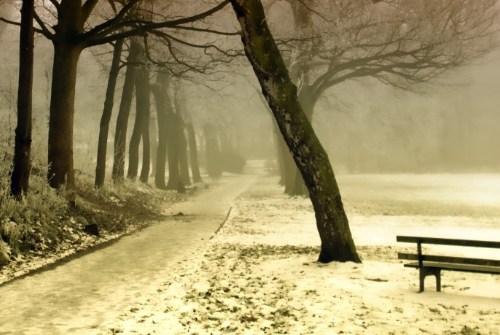 Seasonal Affective Disorder and addiction