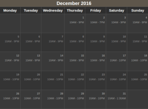 Universal Studio Singapore Dec 2016 Calendar