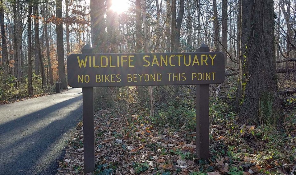 "Sign reading ""Wildlife Sanctuary"" ""no bike beyond this point"" near entrance to Huntley Meadows"