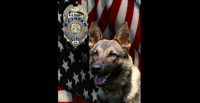 Picture of dog with badge over flag
