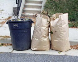 A barrel and two paper bags with yard waste in them