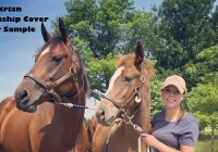 Equestrian-Internship-Cover-Letter-Page-Image