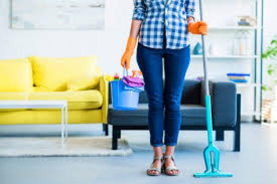 Housemaid Skills Page Image