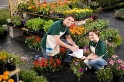 Nursery Plant Worker Cover Letter Sample | CLR