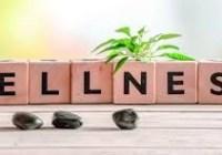 Wellness Coordinator Resume Page Main Image