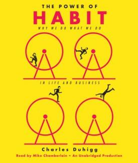 The Power of Habit audio book by Charles Duhigg