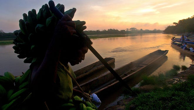 In this May 24, 2005, file photo, a Miskito Indian carries bananas on his head on the banks of the Coco river near the town of Waspan, Nicaragua, on the border with Honduras. The government of Honduras announced on Thursday, Sept. 12, 2013 that it has granted title to more than one million acres along Honduras' border with Nicaragua and the Caribbean coast to the Miskito Indian communities that inhabit the area.