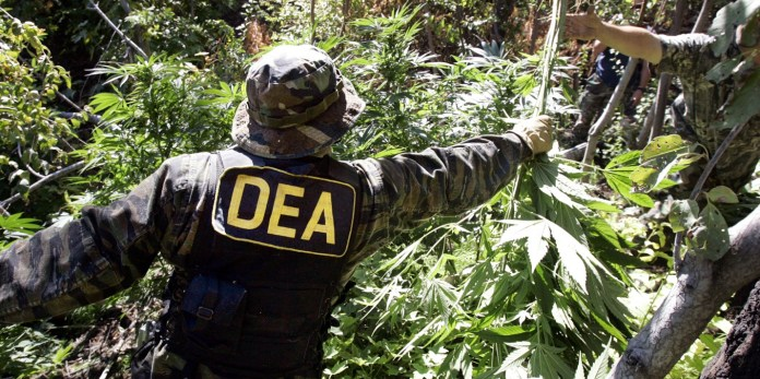 How the DEA Profits off the War on Drugs - ATTN: