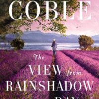 BookLookBlogger Review: The View From Rainshadow Bay