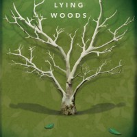 Book Review: The Lying Woods by Ashley Elston