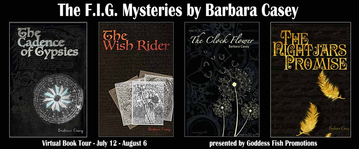 Goddess Fish Promotions VBT: The F.I.G. Mysteries by Barbara Casey