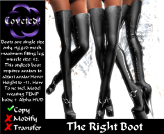TheRightBoots