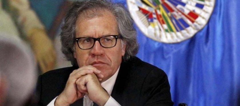 La OEA, Almagro y la corrupción en Venezuela – Por Carlos Pozzo Bracho
