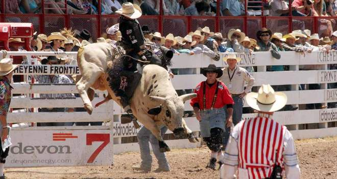 Image result for frontier days rodeo