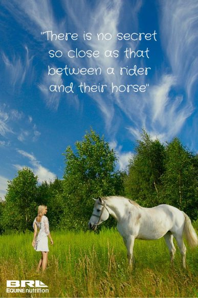 Beautiful Horse Quotes Cowboy Magic Cowboy Magic