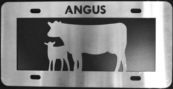 Angus cow/calf
