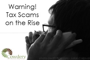 Tax Scams on the Rise | Cowderytax.com/home