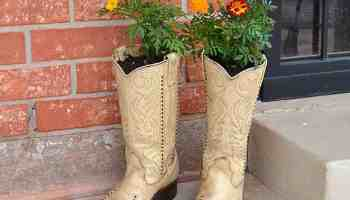 Cowgirl | Cowboy Boot Planter