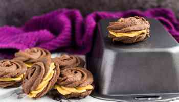 chocolate pumpkin treats