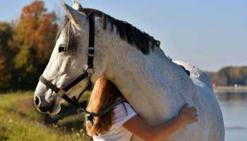 """Cowgirl Magazine"" - Tribute Equestrians"