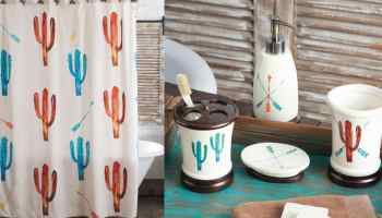 cactus in color collection rods cowgirl magazine