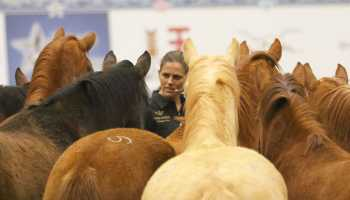 vicki wilson at road to the horse with horses cowgirl magazine