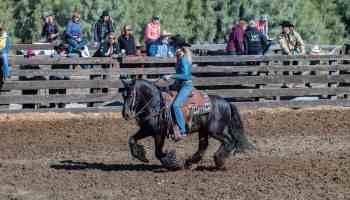 sarah mckibben riding gypsy vanner cowgirl magazine