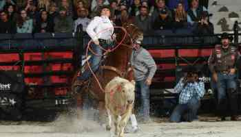 jackie crawford bull stock media wcra triple crown rodeo cowgirl magazine