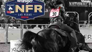 2019 nfr back numbers