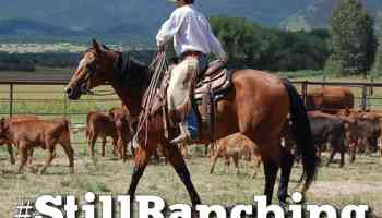 the cowboy channel words of encouragement cowgirl magazine