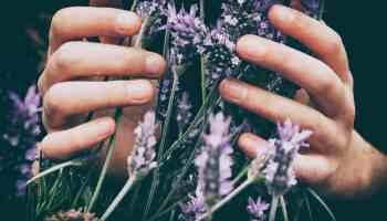 stress aromatherapy cowgirl magazine