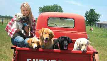 miranda lambert dogs muttnation cowgirl magazine