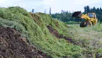 manure pile cowgirl magazine