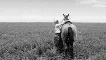 Why - What is your why - cowgirl - Adrian Brennan - dear cowgirl