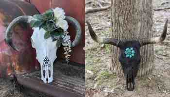 Custom Cow Skulls cowgirl magazine
