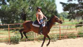 buck cowgirl magazine